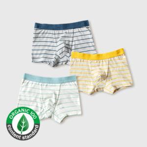 กางเกงในขาสั้นเด็ก 21ss/Drawers boy – Stripe
